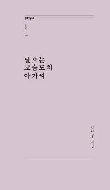 날으는 고슴도치 아가씨(문학동네포에지017)